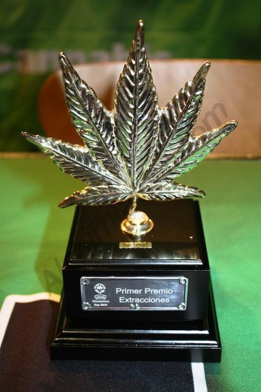 Coupe de la Cannabis Champions Cup
