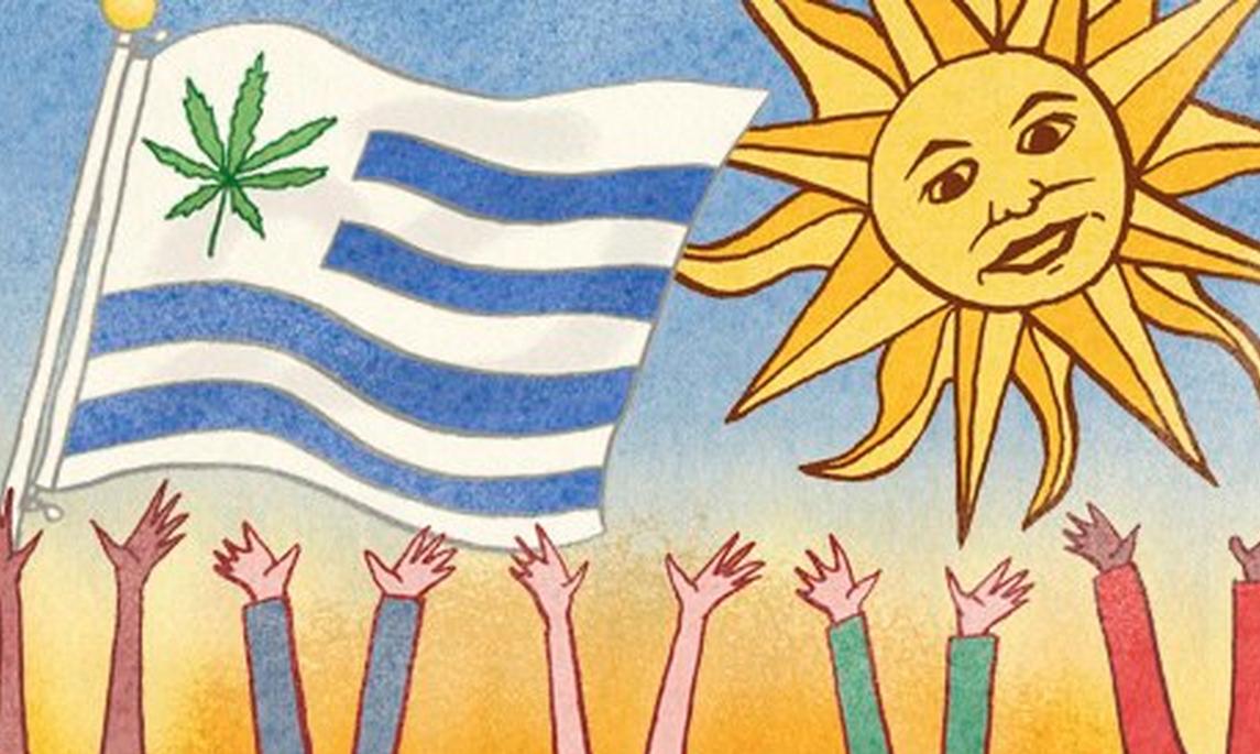 Uruguay, premier pays au monde à avoir légalisé le cannabis