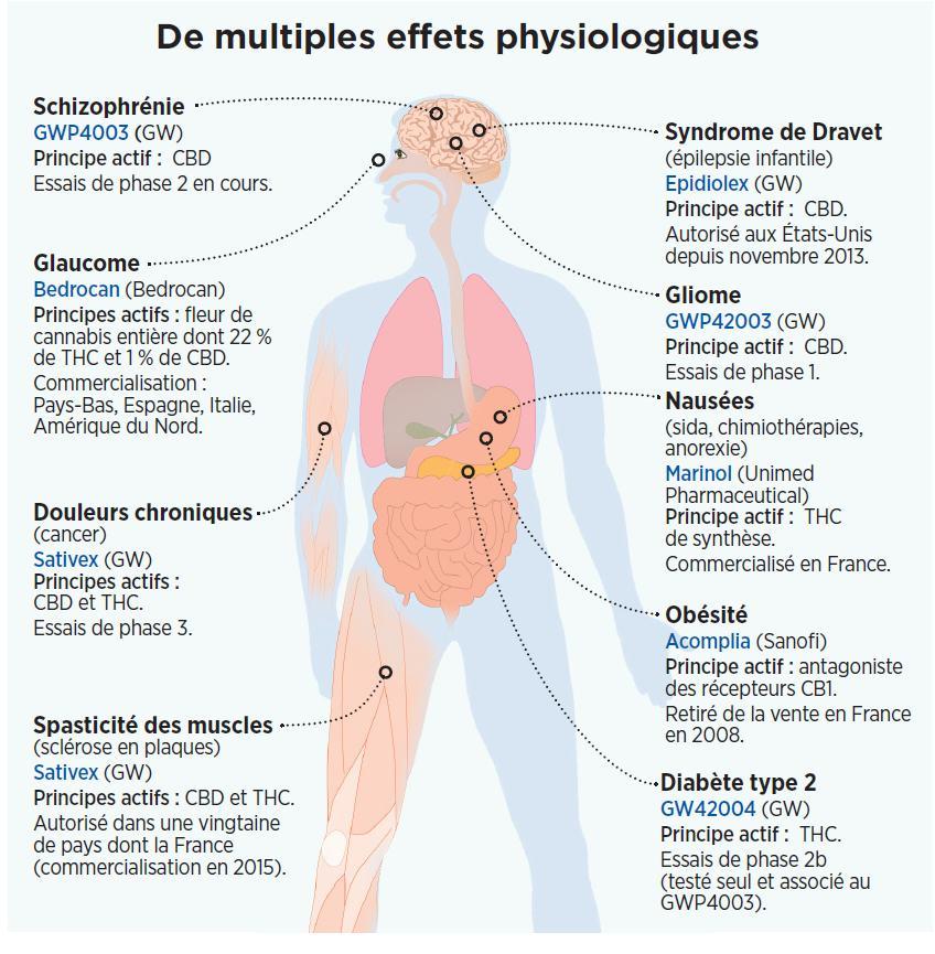 Effets physiologiques du cannabis (source: Sciences et Avenir, Mars 2014)