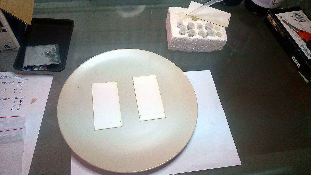 Plaques de chromatographie sur couche mince