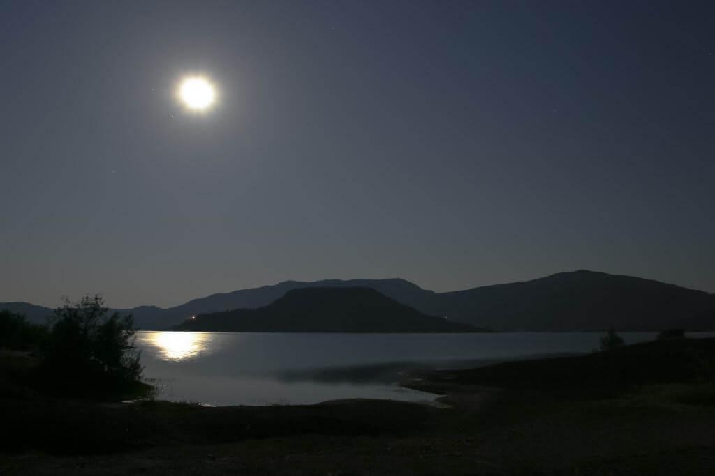 La durée de la journée et de la nuit influence de nombreux processus biologiques.