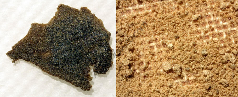 Comparaison entre des différentes deuxième passes, Fresh Frozen (à gauche) et Fresh Chilled (à droite).