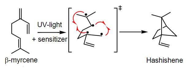 Synthèse du hashishene provenant du myrcène grâce à une lampe UV