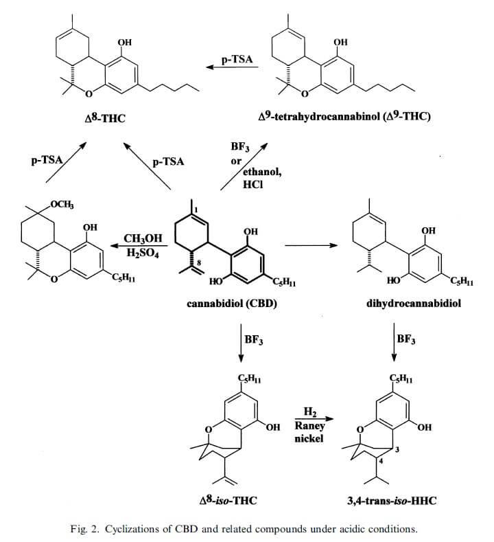 Au niveau chimique, le CBD peut être transformé facilement en THC