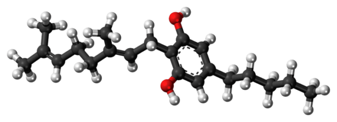 Molécule de CBG