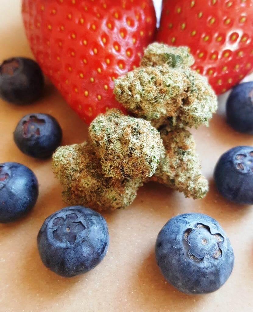Comment Faire Des Graines De Fraises variétés de cannabis au goût fruité- alchimiaweb