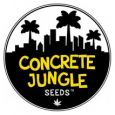 Concrete Jungle Seeds