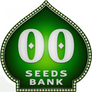 00 seeds Automatic Promo
