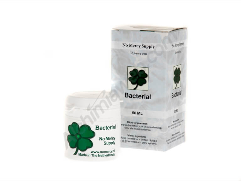 No Mercy Supply bacterial