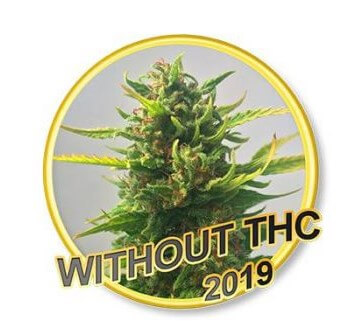 Without THC