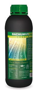 Bachumus Evolution - Grow 1L