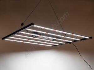Fluence SPYDR Led 2i by Osram