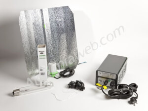 600W Philips GP DE LUXE Kit - Dual
