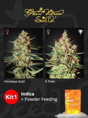 Kit Indica + Powder Feeding