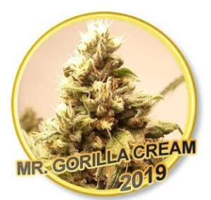 Mr Gorilla Cream
