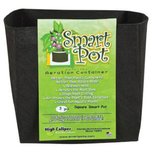 Smart Pot - Intelligenter Blumentopf