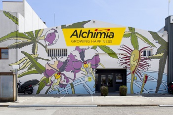 Alchimia Grow Shop facade