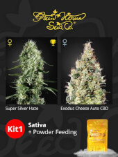 Kit Sativa + Powder Feeding