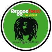 Reggae Seeds Regular Promo 3 semillas