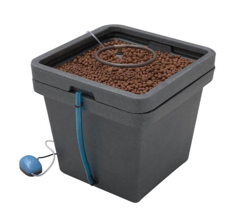 Consigli Su Irrigazione Automatica Area Novizi E Risoluzione