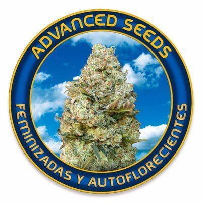Advanced Seeds Feminizada Promo