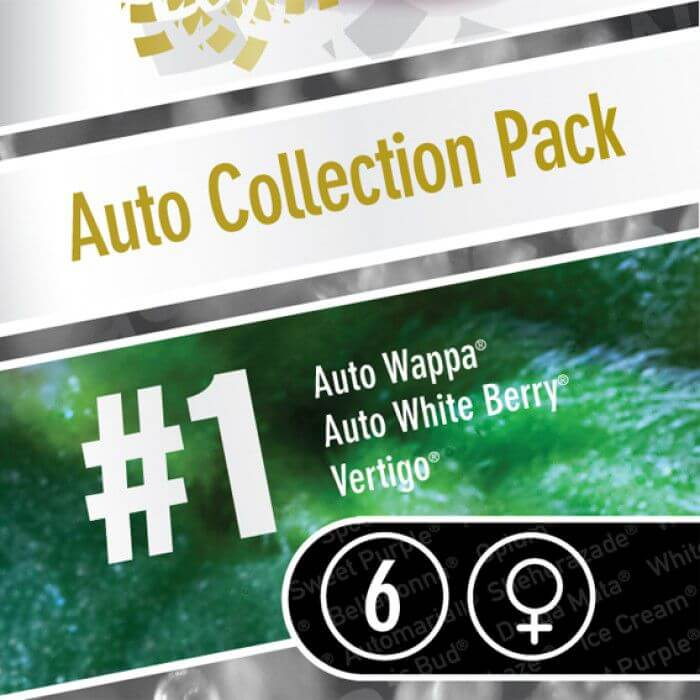 Auto Collection Pack #1