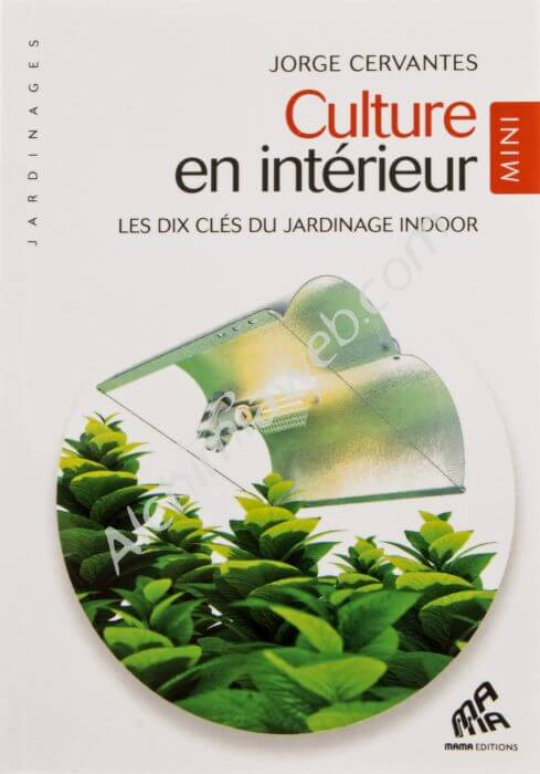 Vente de livre culture en interieur mini ed cervantes for Culture en interieur