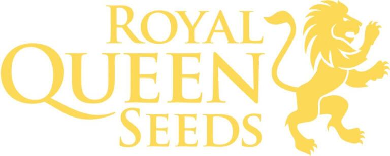 Royal Queen Auto Promo
