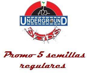 Underground seeds Promo 5 graines réguliers