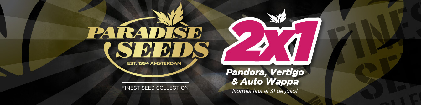 Paradise 2x1 Juliol 2020