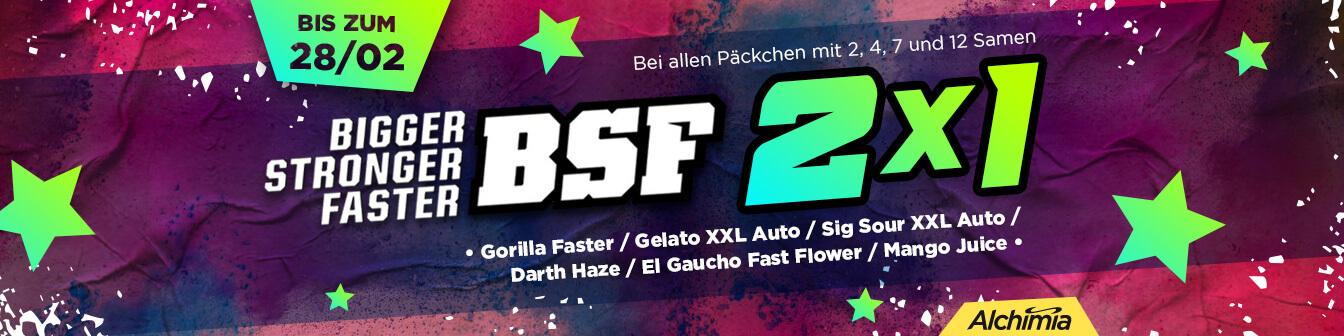 BSF 2x1 Feb 2021