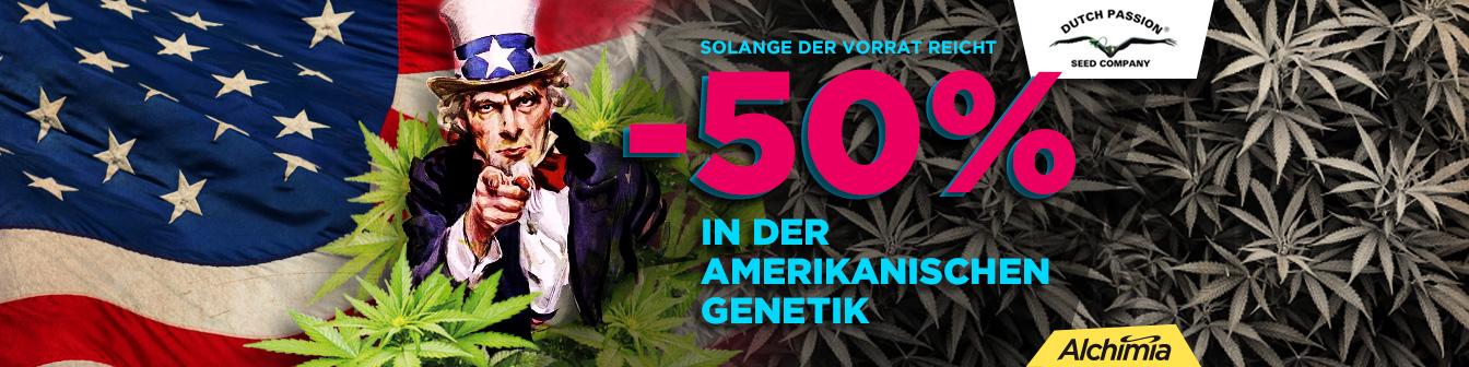 Dutch 50 Yankees Prorroga