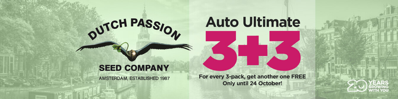 Auto Ultimate 3+3