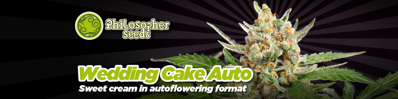 Wedding Cake Auto Philo New
