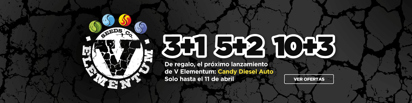 V Elementum 3+1, 5+2, 1+3 Abril21
