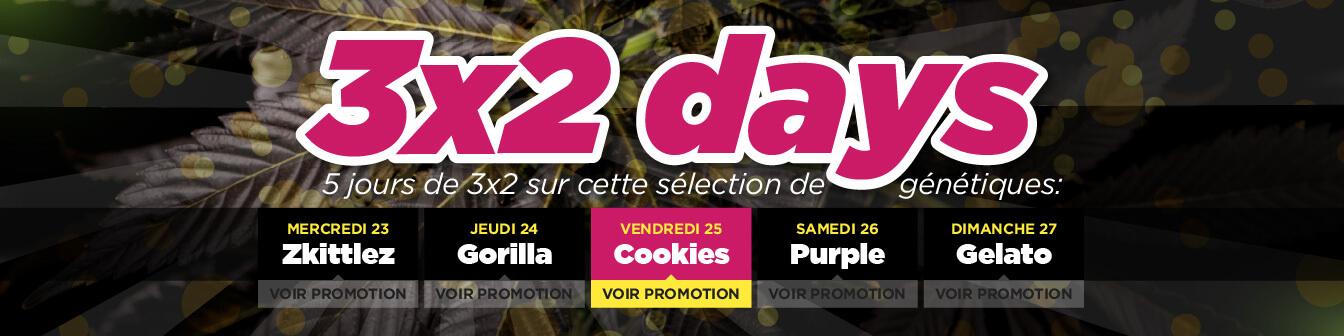 3x2 Cookies