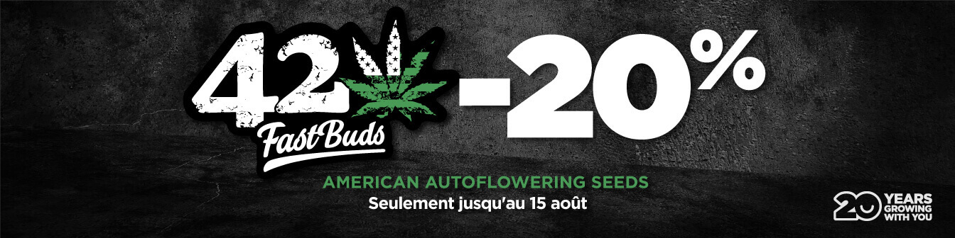 Fast Buds Agost21 Dte20