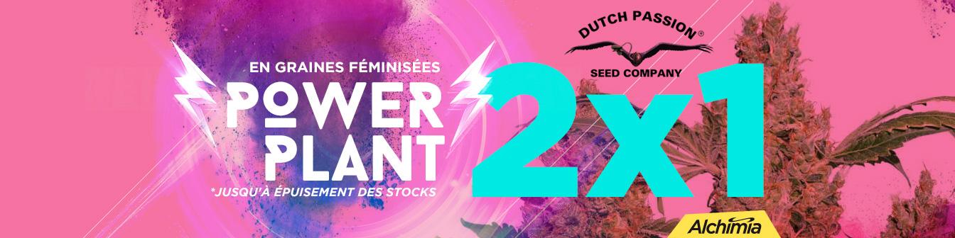 Power Plant 2x1 Fem